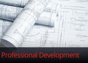 engineering professional development, working at TEMEC